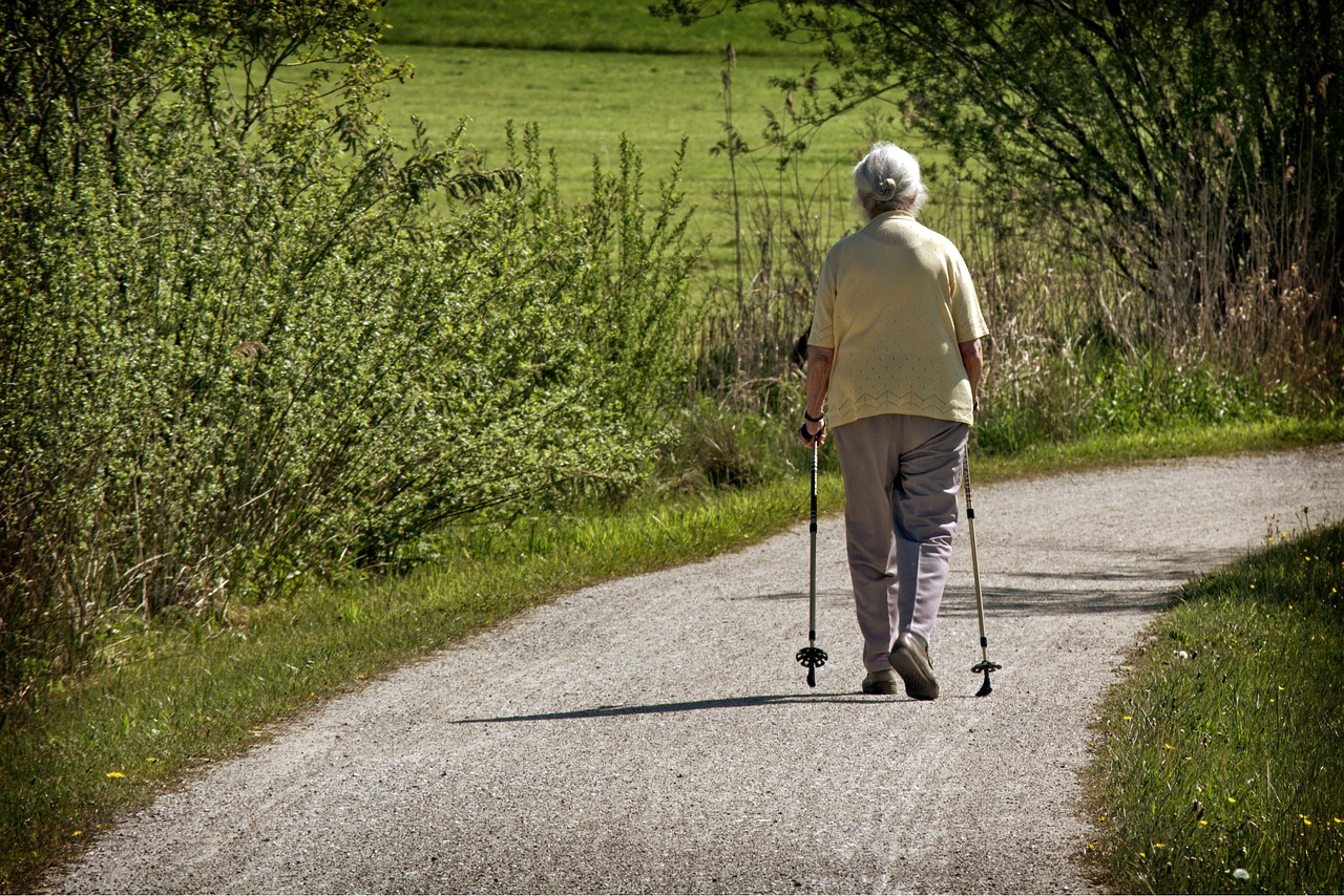 pohyb je zdravie